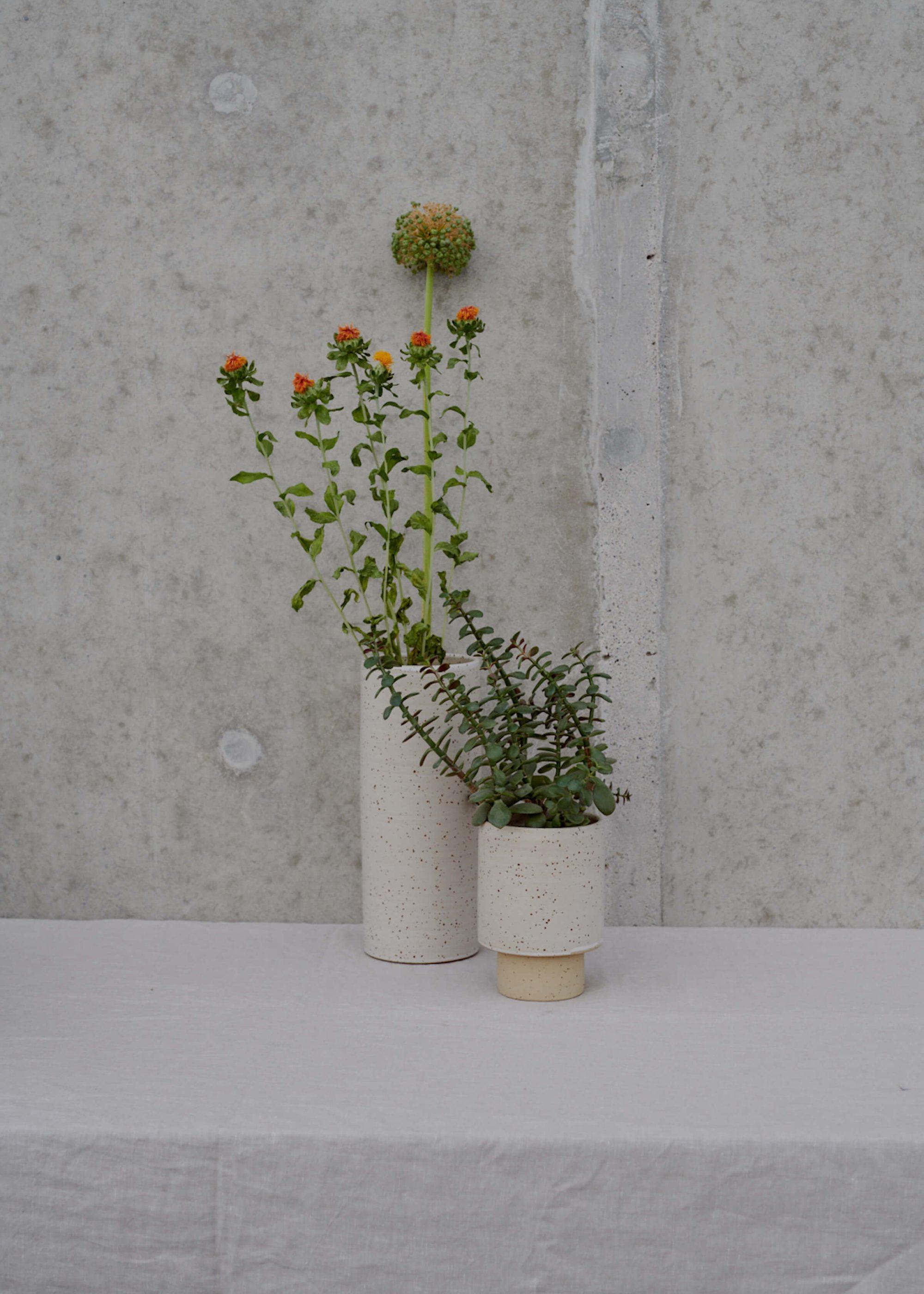 Product image for N° ICG2 Torus II Vase L
